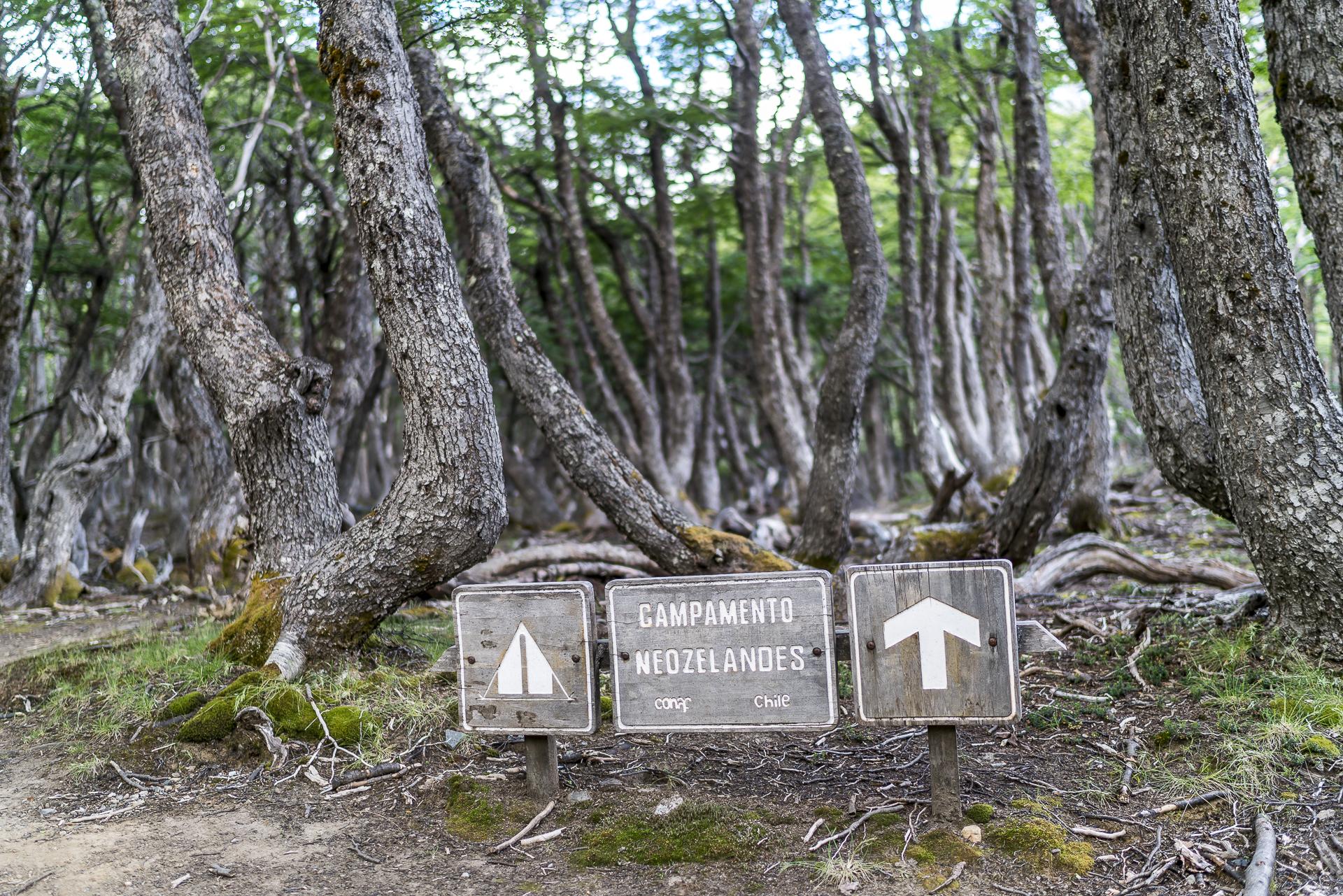 Campamento Neozelandes Cerro Castillo