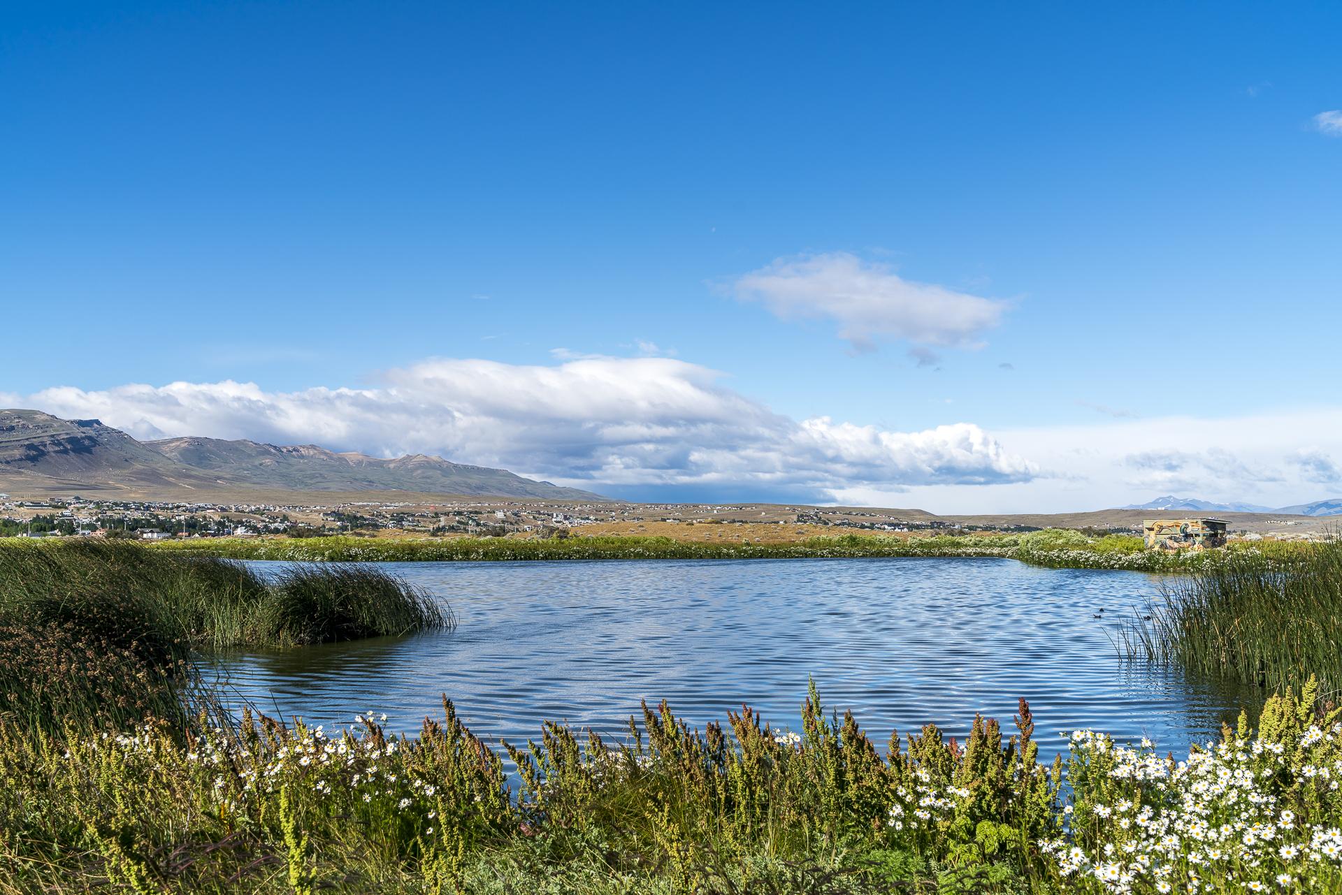 Laguna Nimez Naturreservat El Calafate