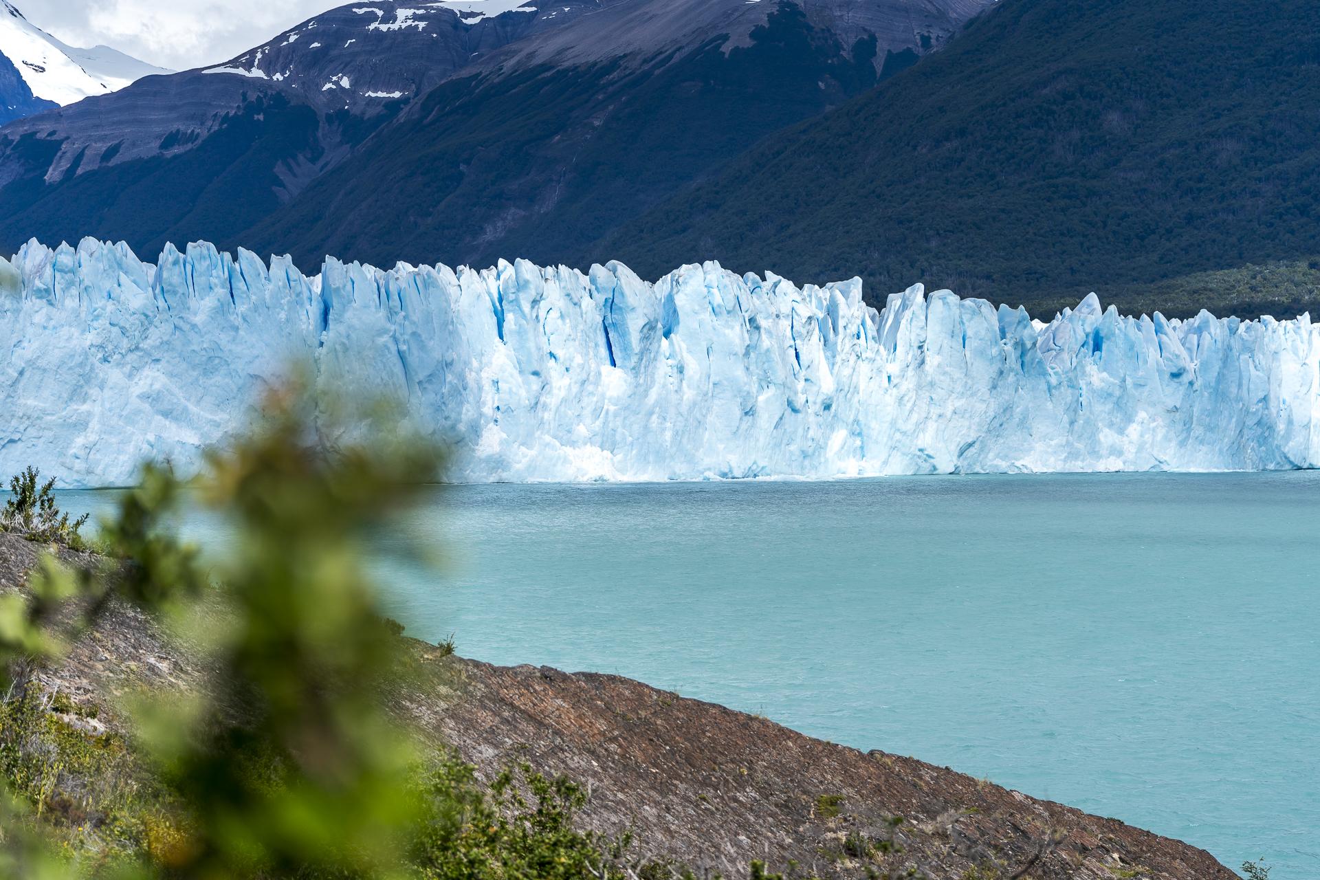 Perito Moreno Lago Argentino