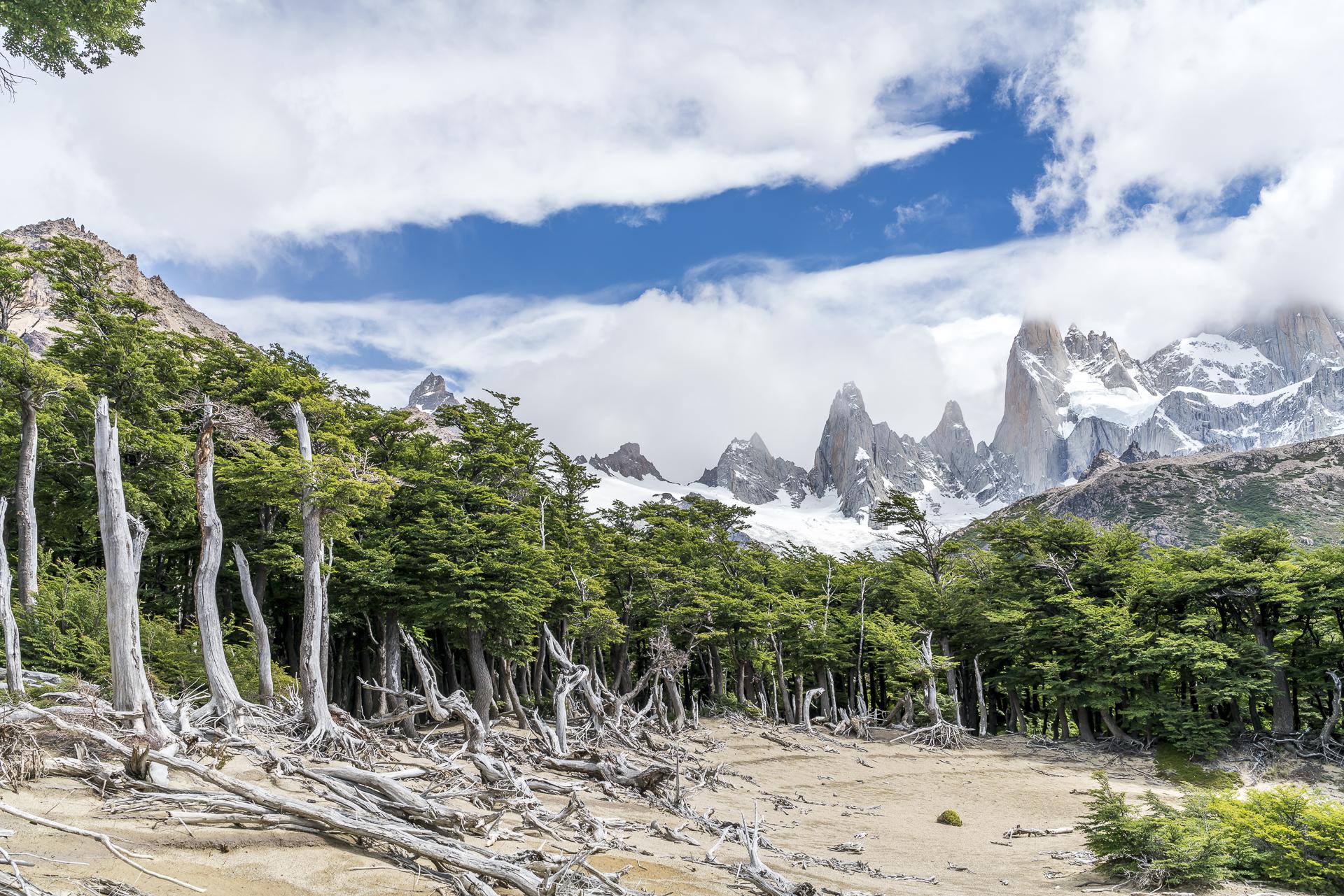 Wanderguide El Chaltén El Calafate Argentinien
