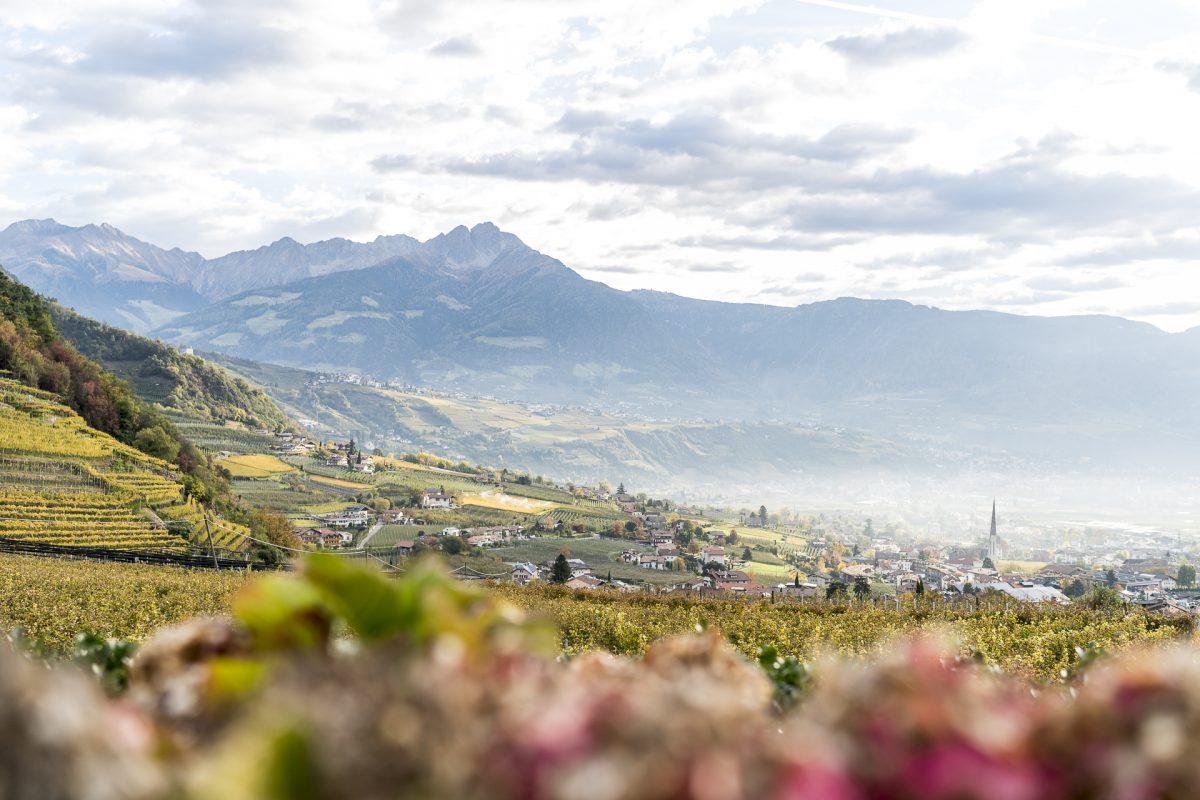 Südtirol für Geniesser: Vom Schloss Plars an den Kalterer See