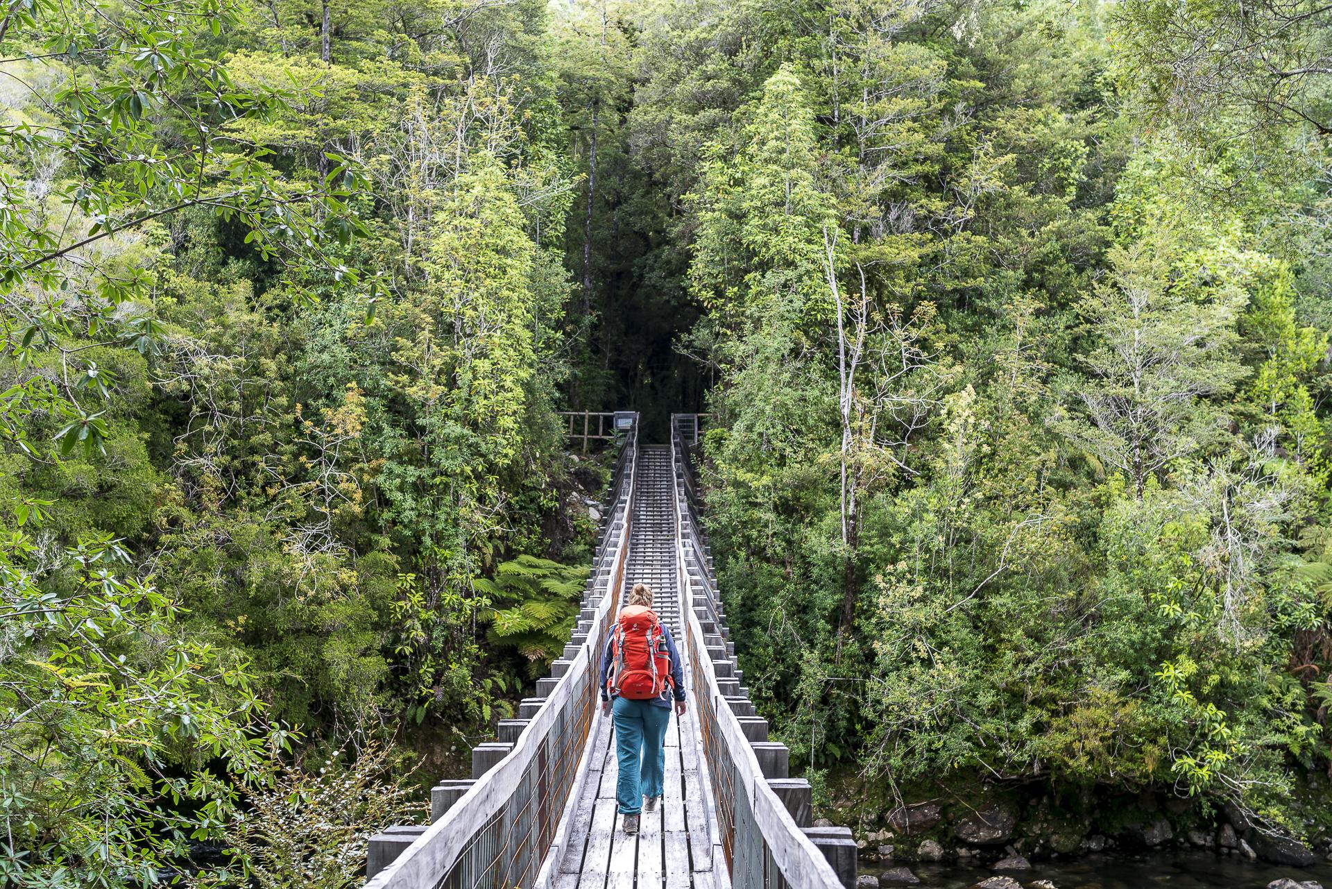 Parque Nacional Alere Andino Wandern