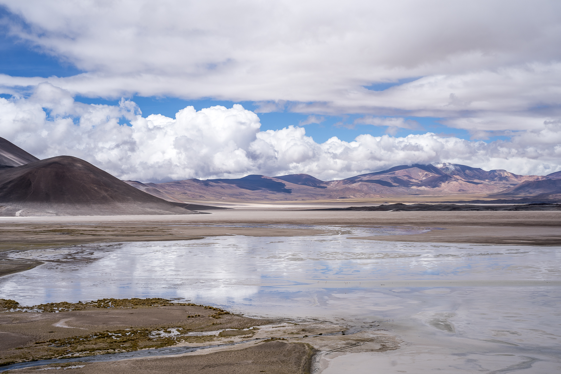 Salar Piedras Rojas Atacama