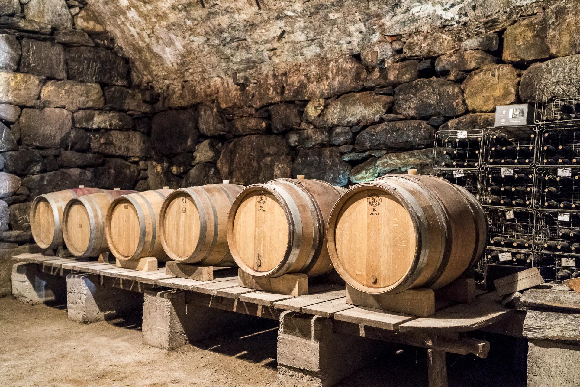 Schloss Plars Weinkeller mit Fässer