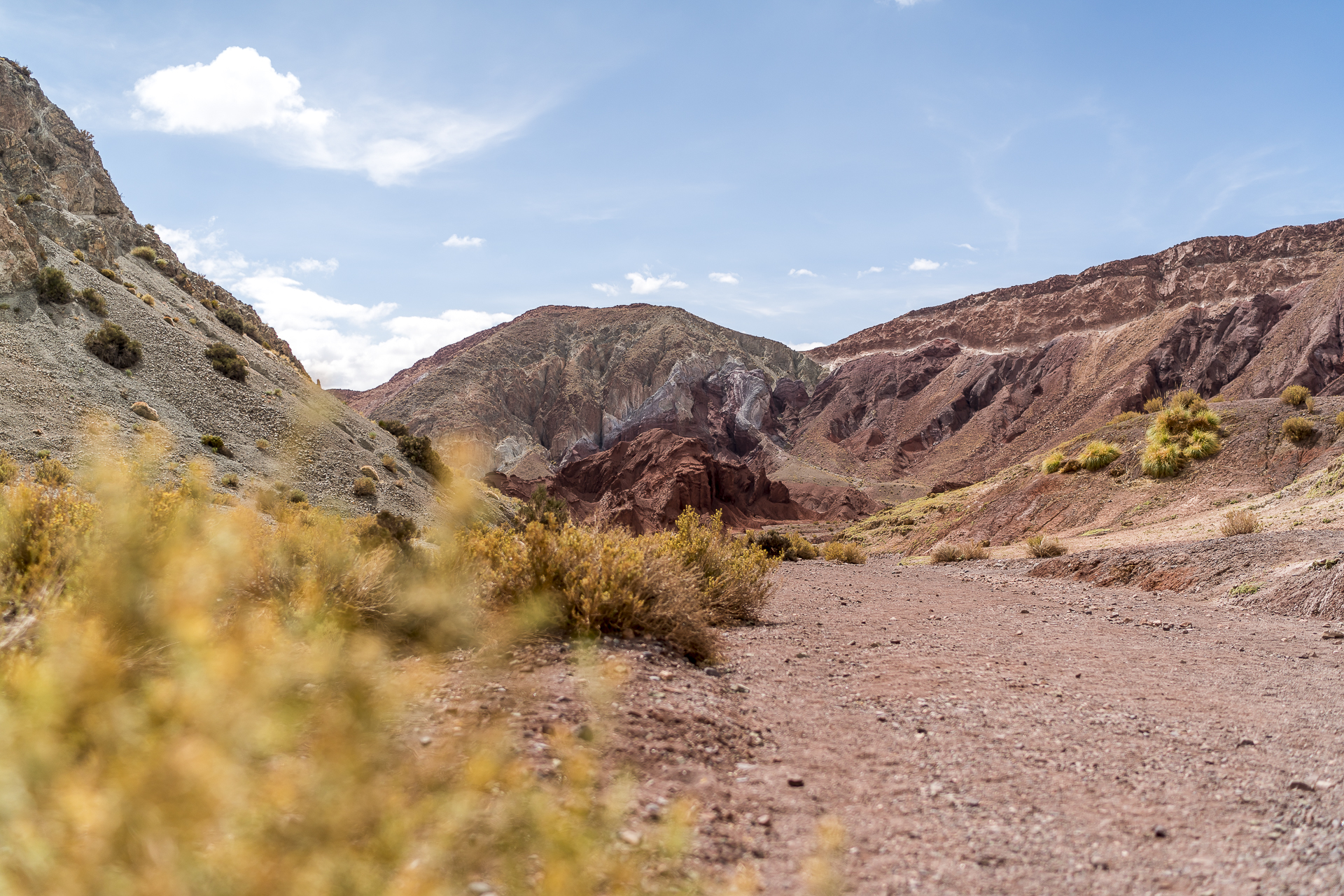 Trail Valle Arcoiris