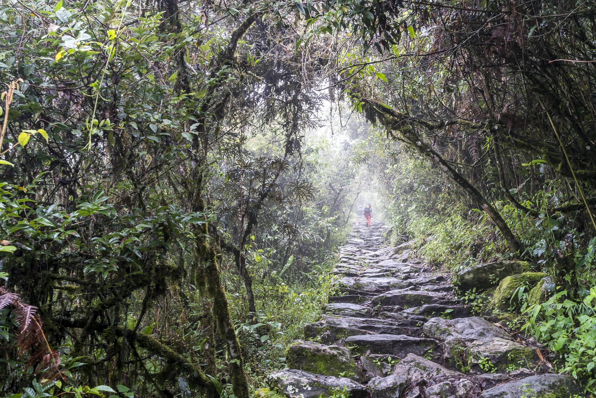 Aufstieg zum Montana Machu Picchu