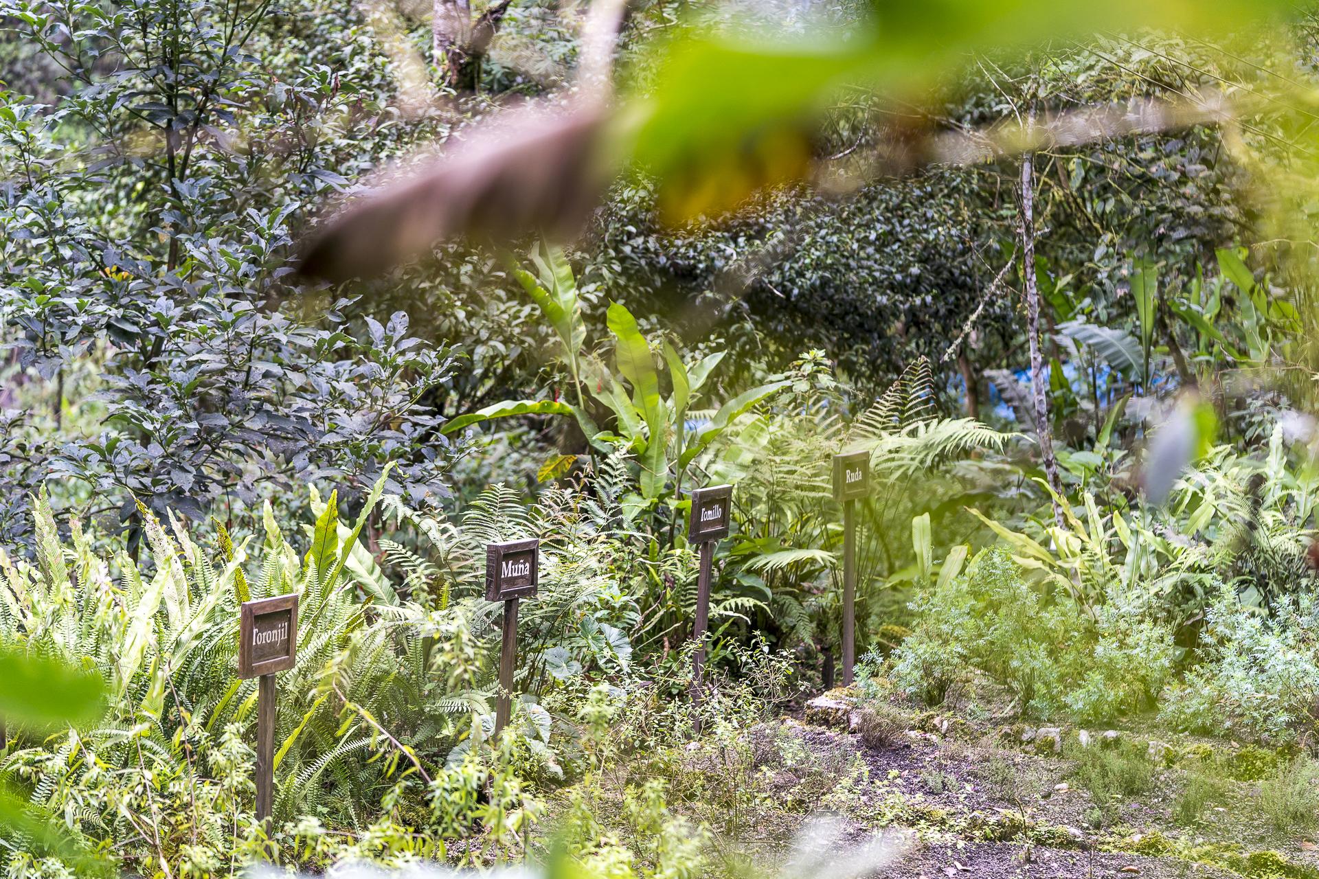 Inkaterra Machu Picchu Pueblo Hotel Garten