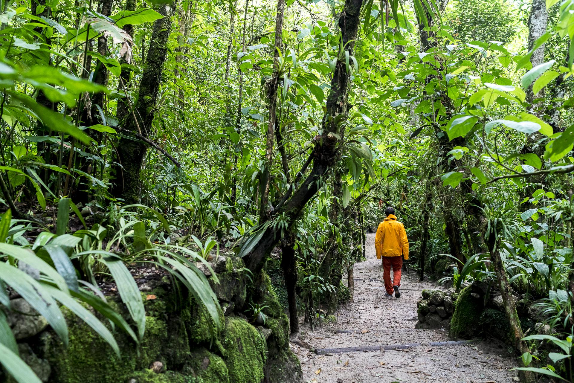 Inkaterra Machu Picchu Nebelwald