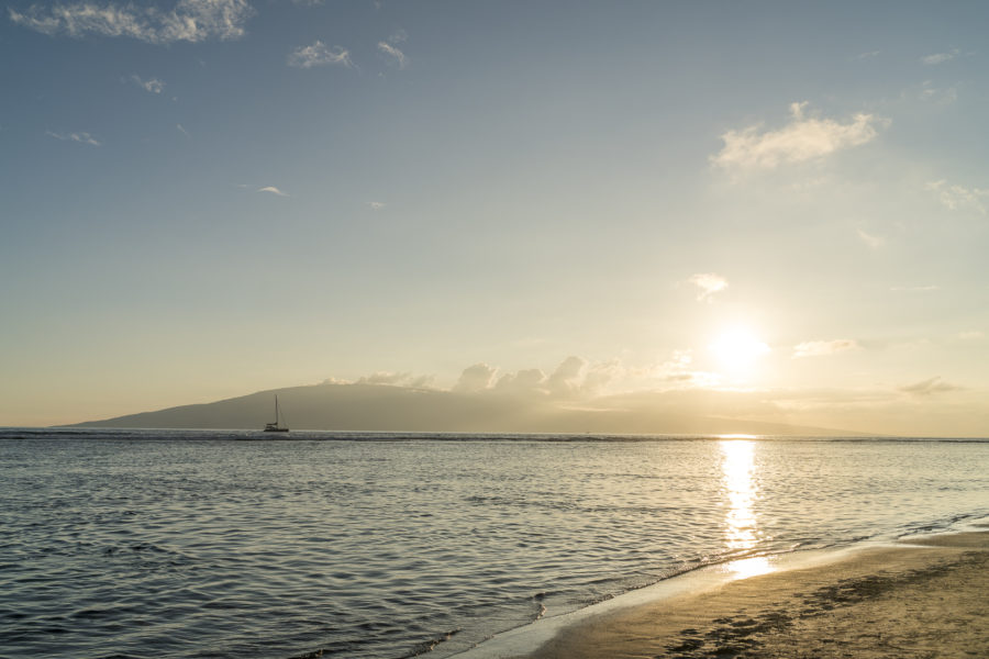 Hawaii Inselhopping Teil 3: Best of Maui in 5 Tagen