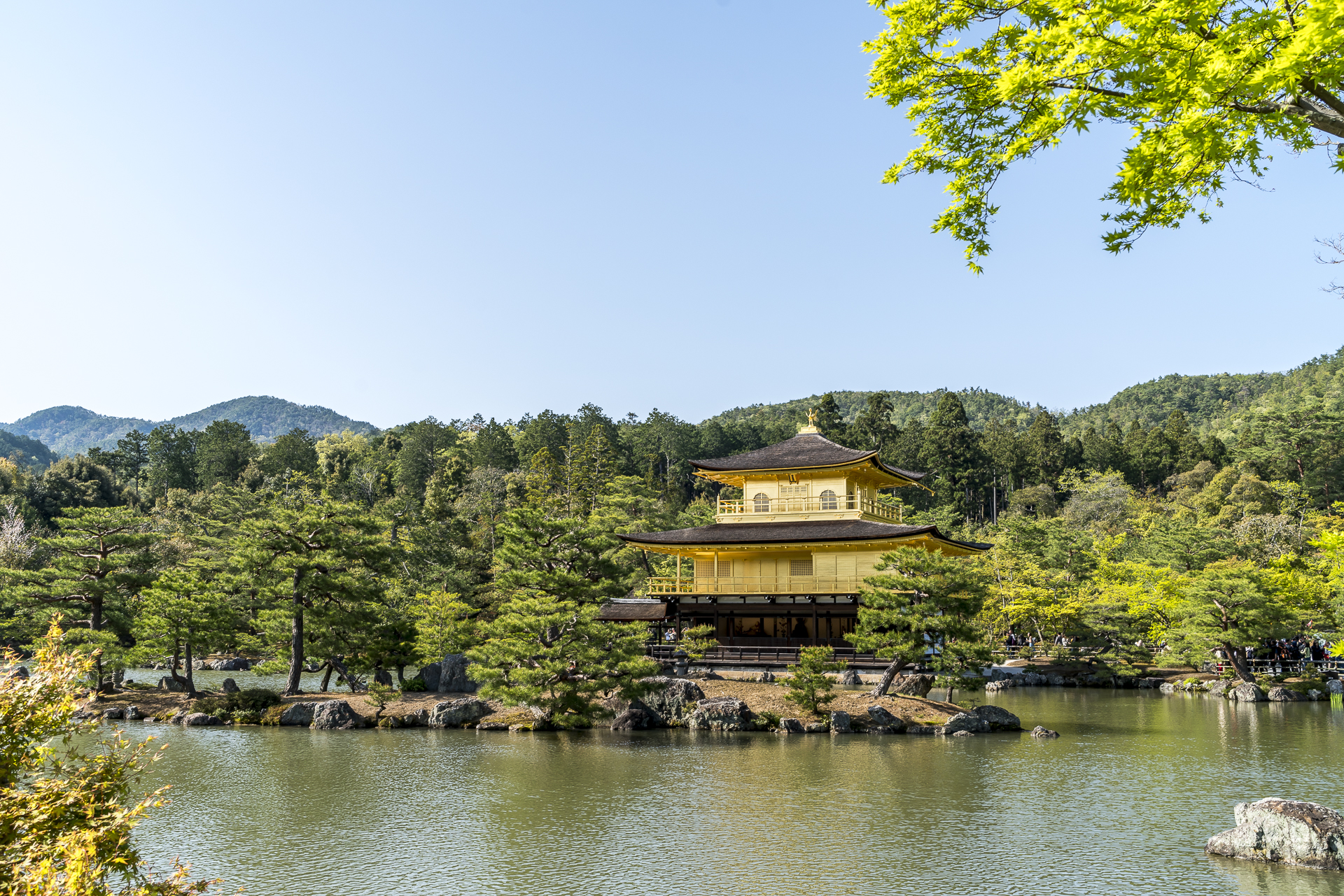 Goldener Tempel Kinkaku-ji Kyoto