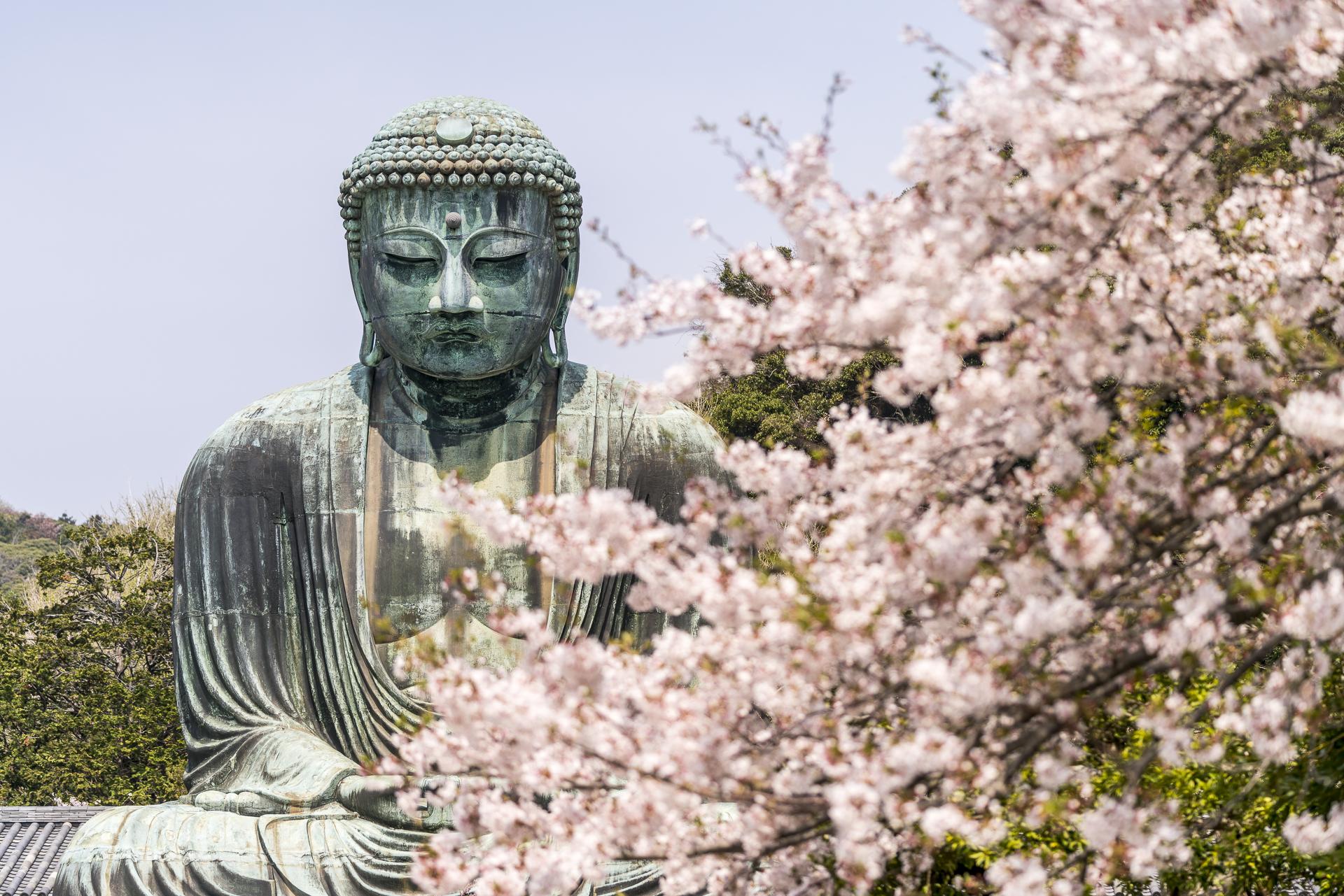 Kotoku-in Buddha Kamakura