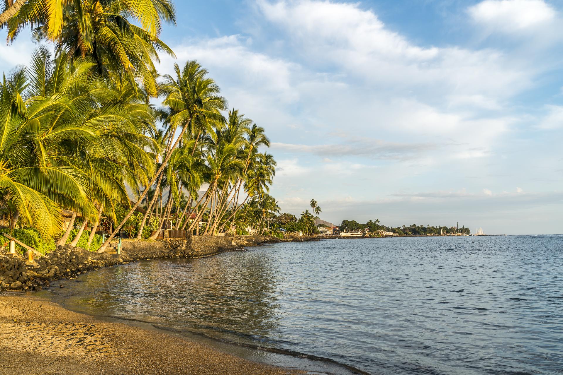 Lahaina Maui Strand
