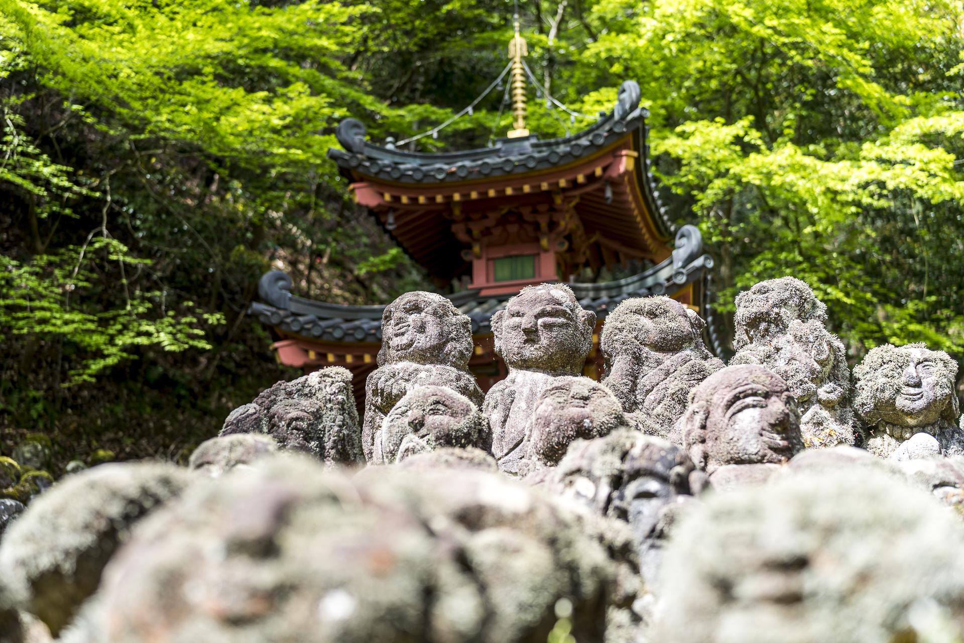 Otagi Nenbutsu-ji Tempel in Kyoto