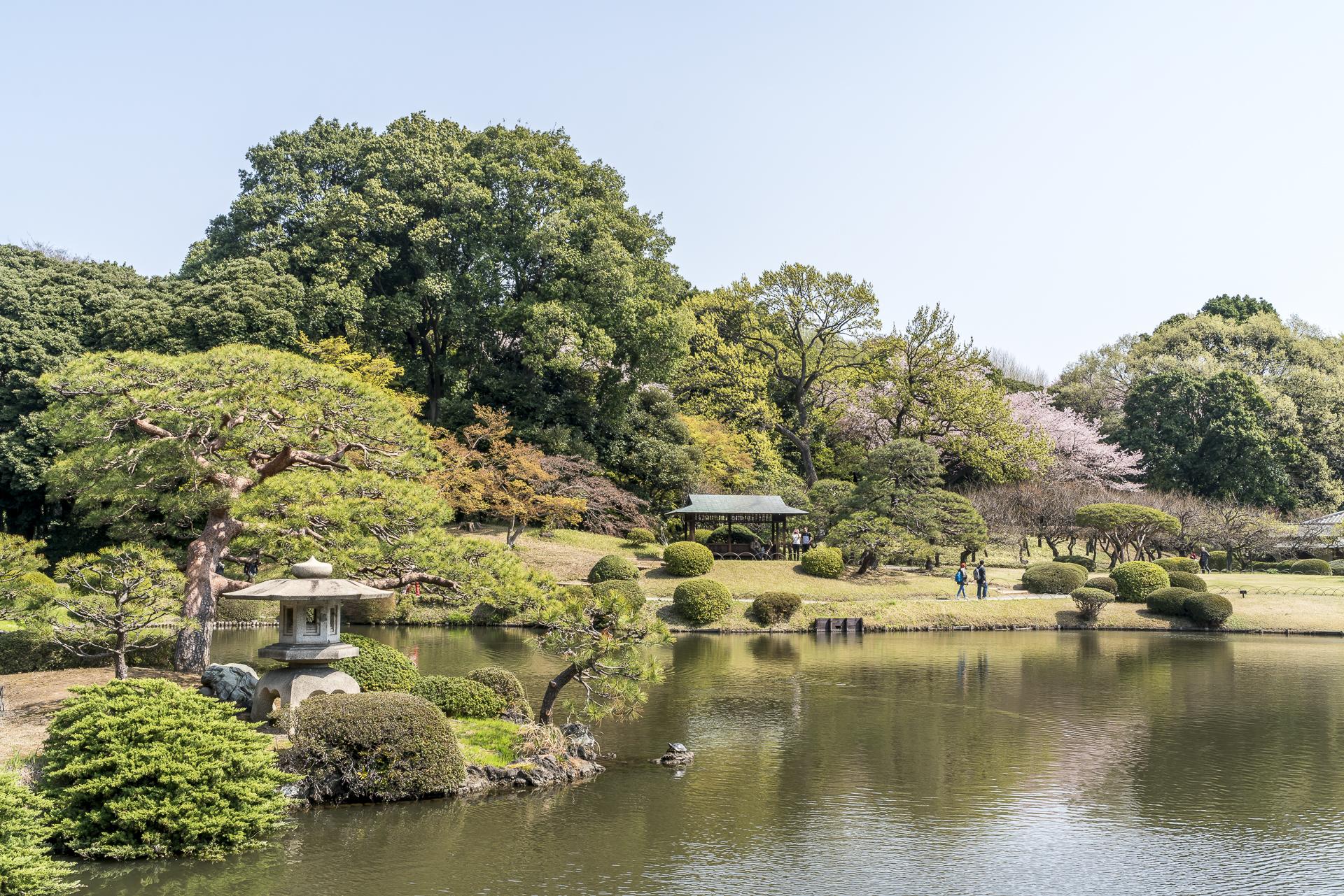 Shinuku-Gyoen Park Tokio