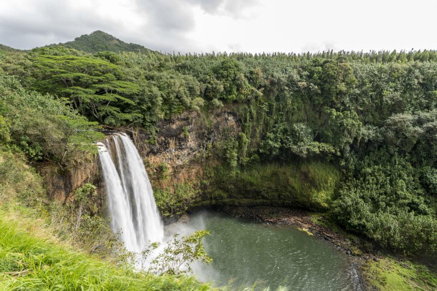 Alohafeeling auf Kauai: Inselferien für Naturliebhaber