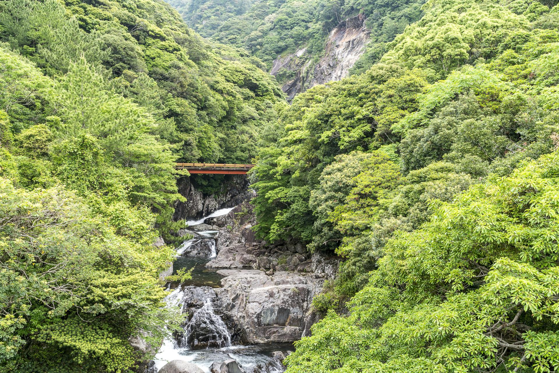 Seibu rindo Forest Path Yakushima Brücke