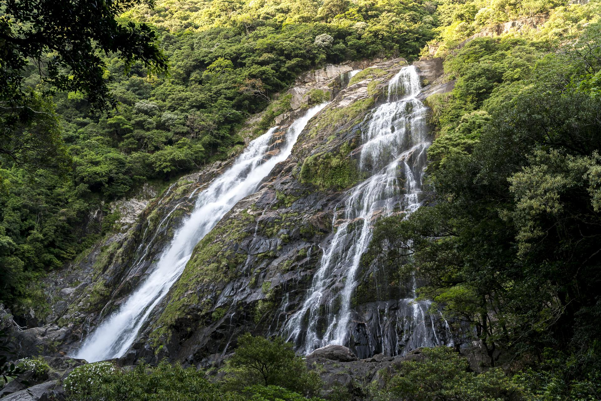 Ohko Taki Waterfall Yakushima