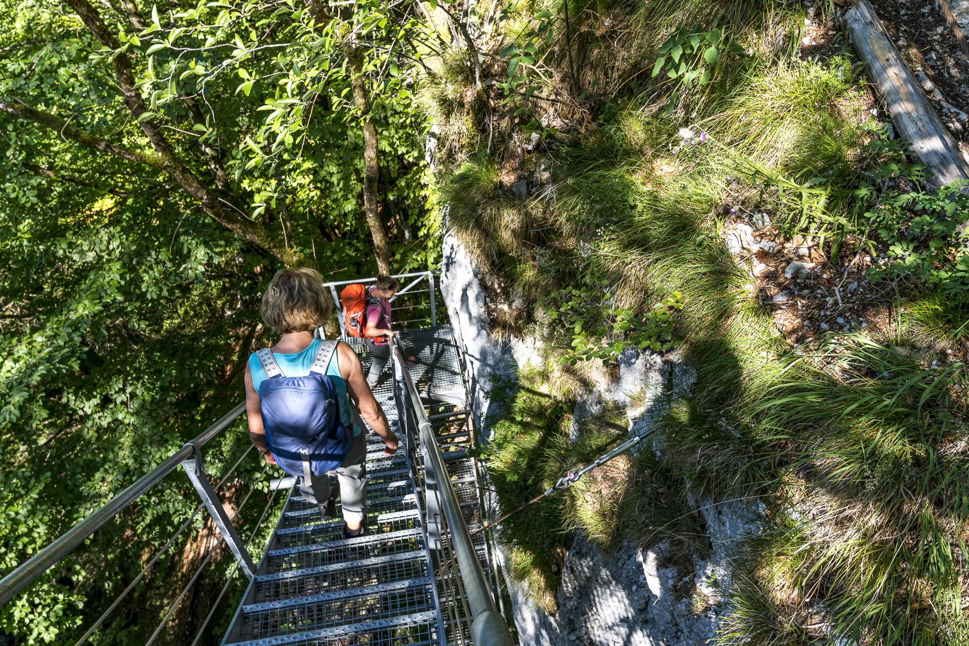 Abstieg zum Buschbach