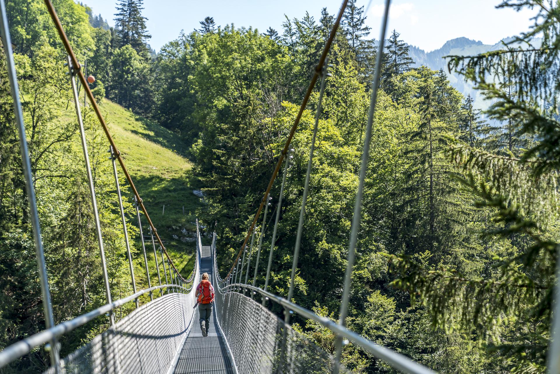 Hängebrücke Leiternweide