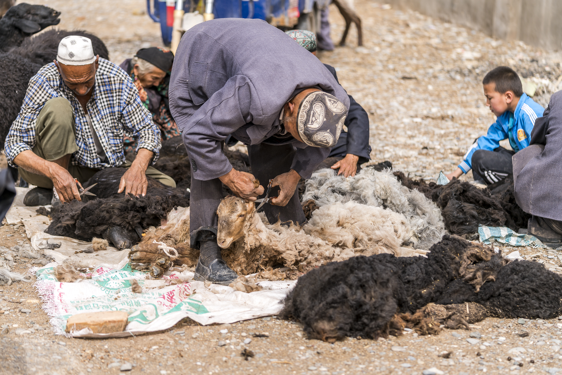 Schafschur am Viehmarkt Kaschgar