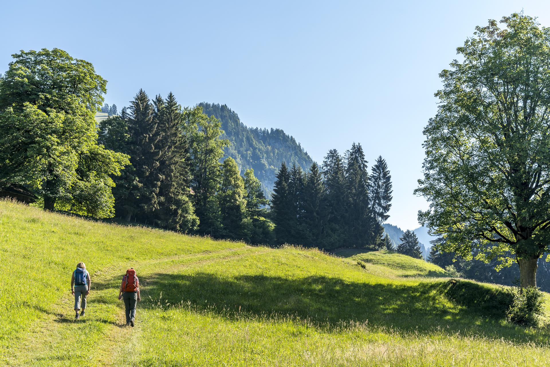 Wanderung Leiterweide