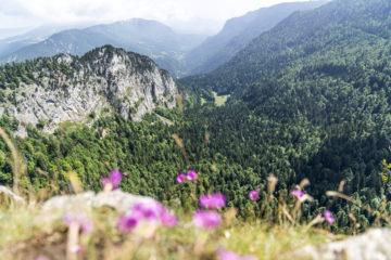 5 Ausflugsziele und Sehenswürdigkeiten im Jura & Drei-Seen-Land