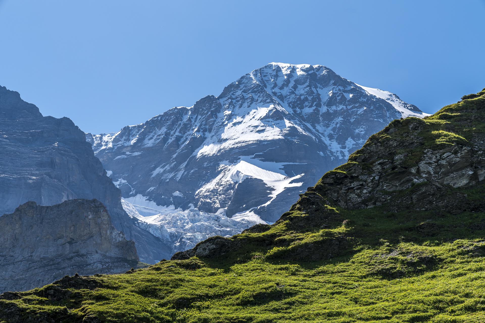 Eismeer Jungfrau