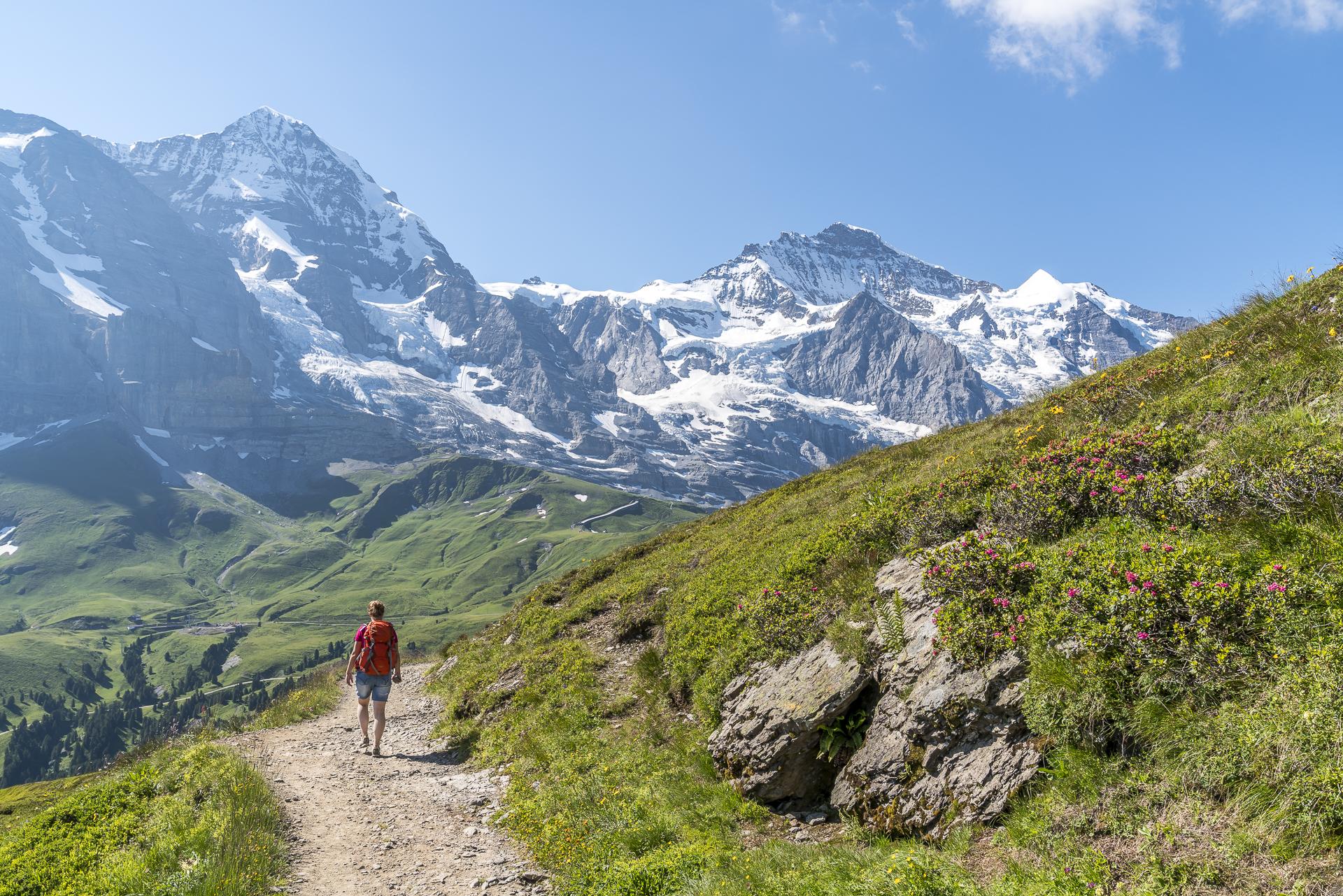 Panoramaweg Grindelwlad