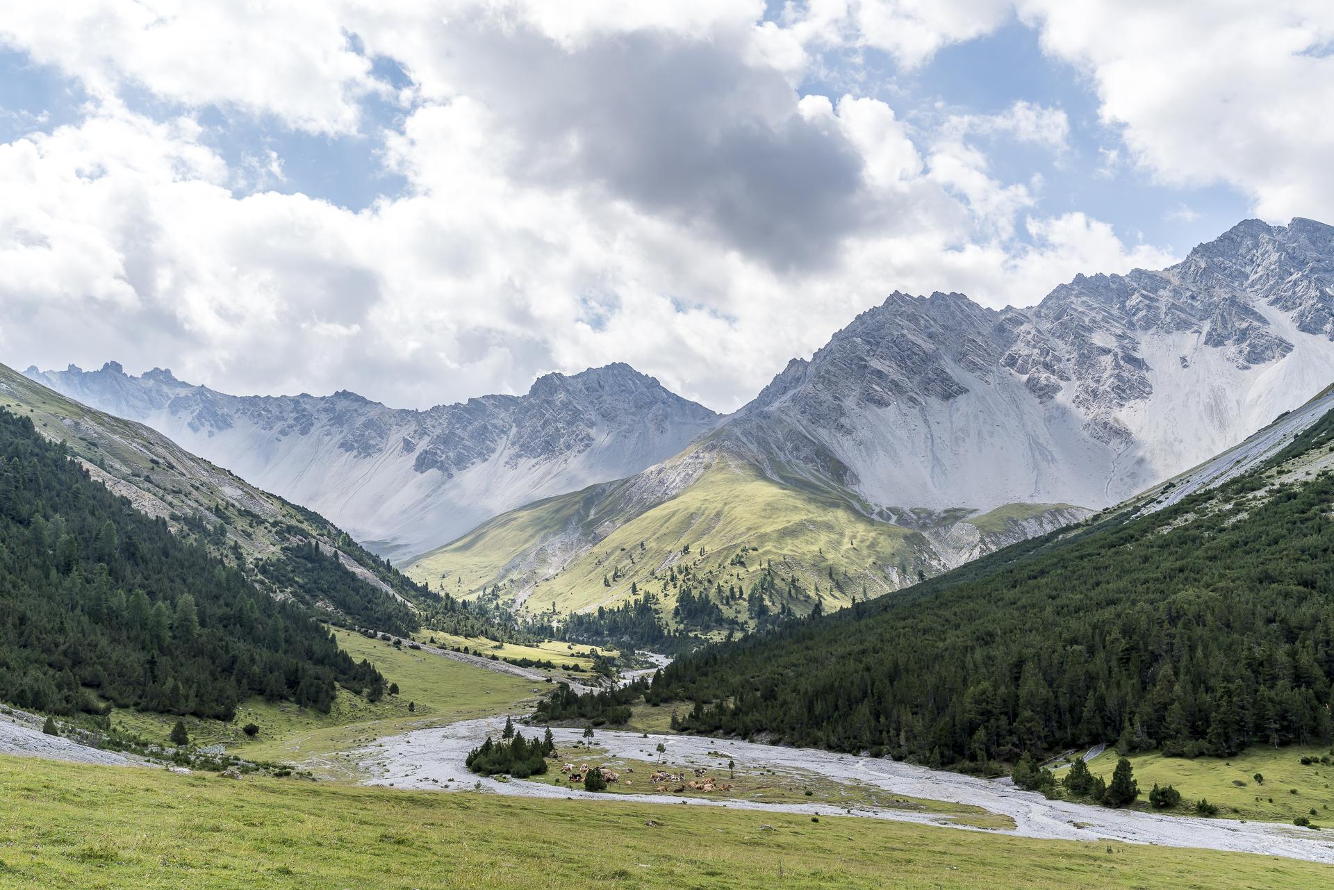 Alp Val Plavna Tarasp