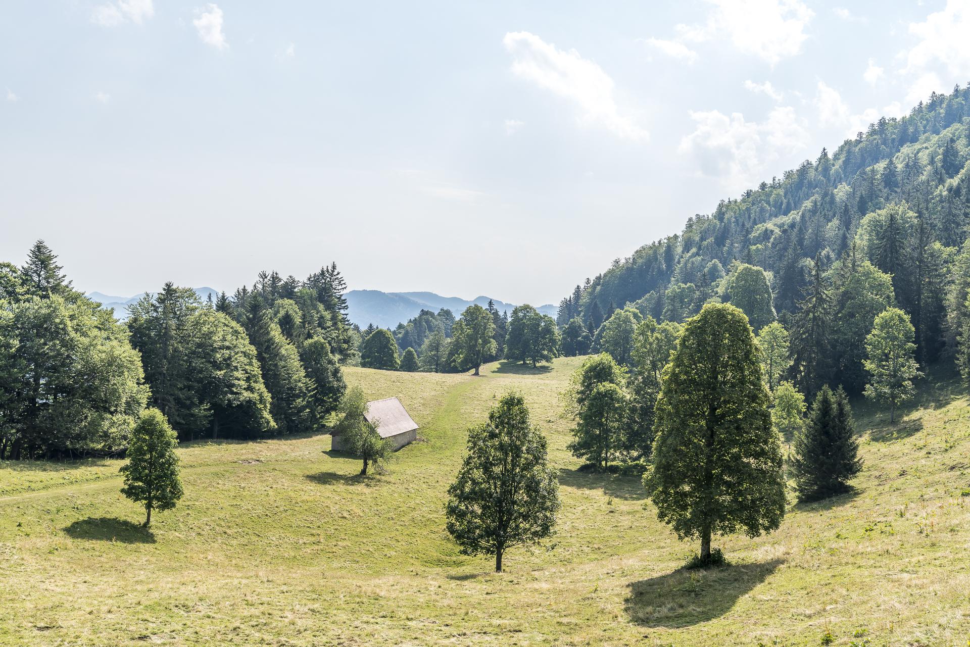 Alpen Jura