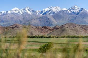 Kirgistan in 5 Tagen: Vom Torugart-Pass nach Bischkek