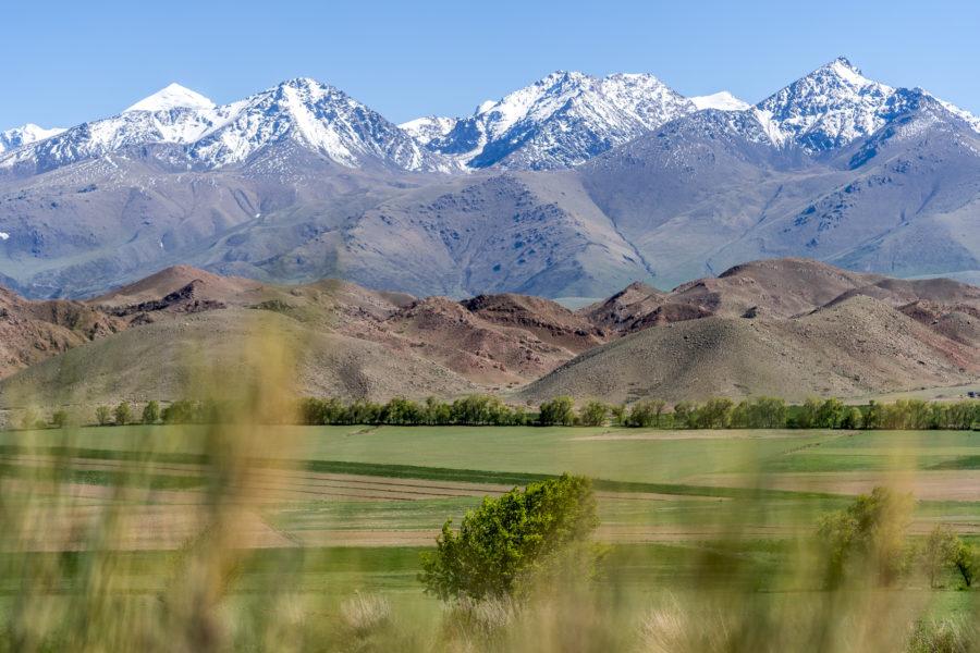 Vom Torugart-Pass nach Bischkek: unsere Erlebnisse in 5 Tagen Kirgistan