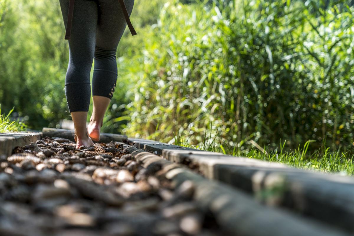 Barfusswanderweg:  Härtetest auf dem Sentier Pieds Nus