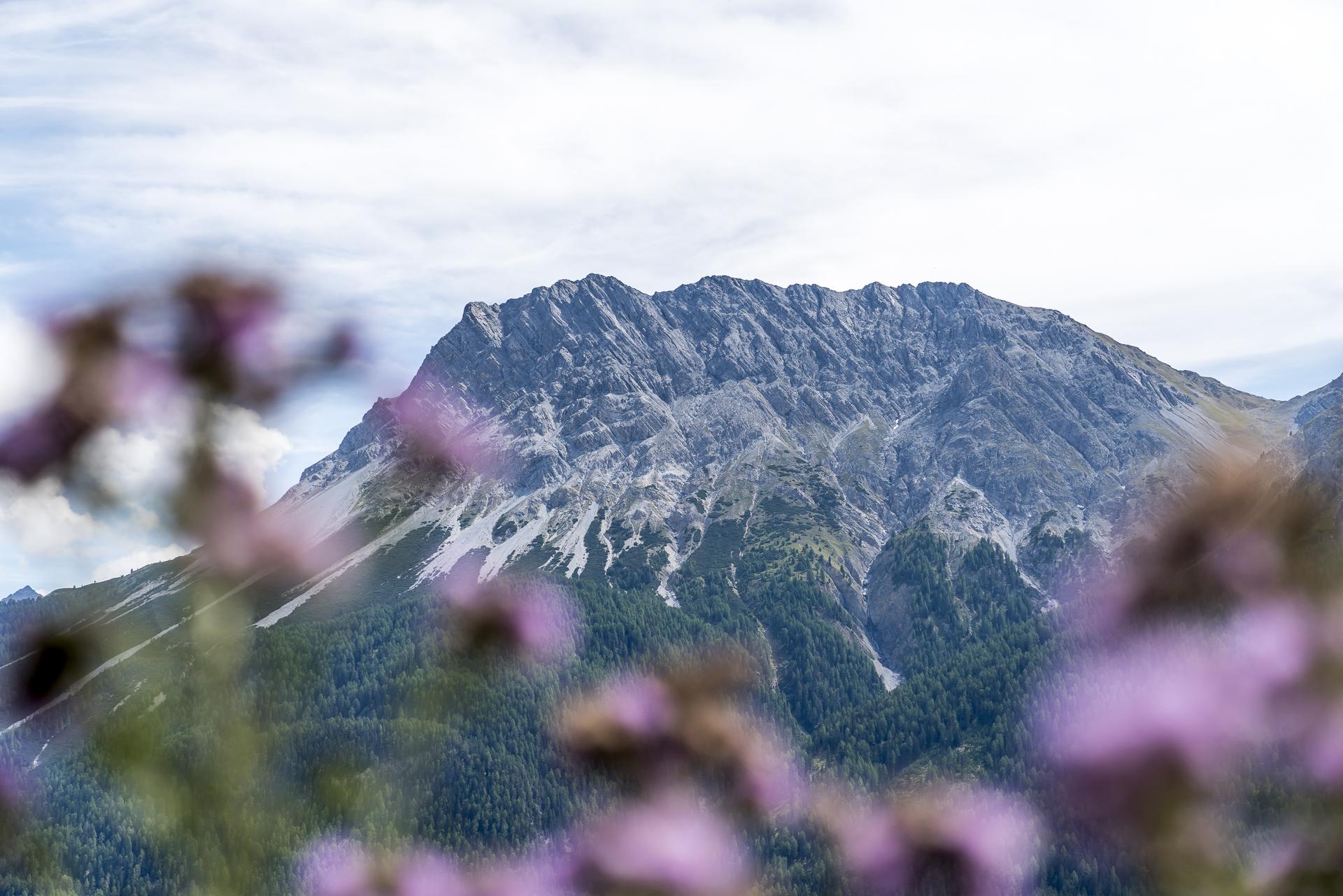 Unterengadin Panorama