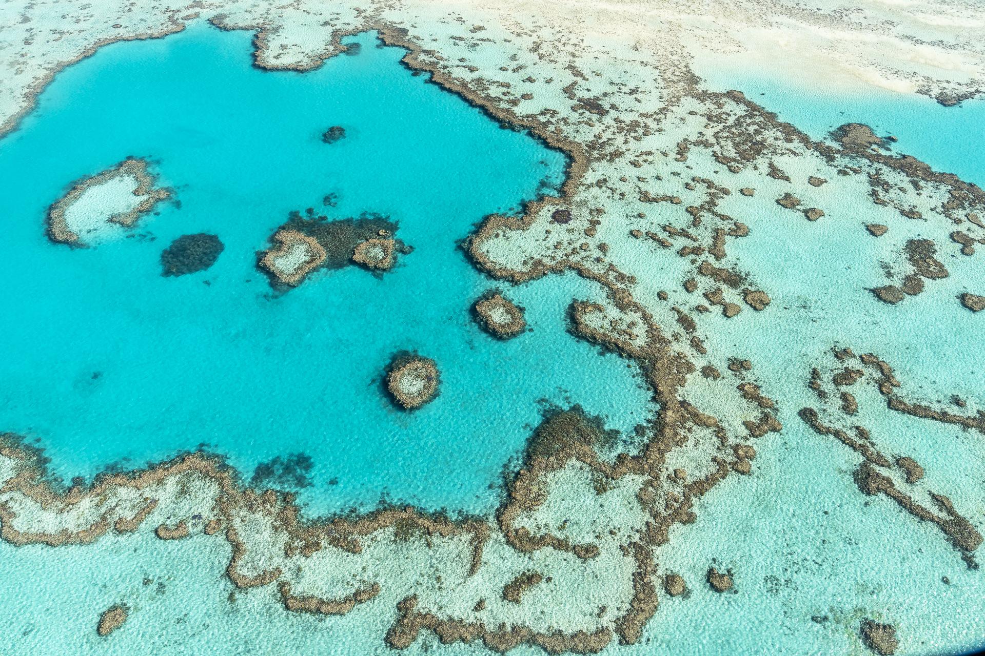 Great Barreier Reef