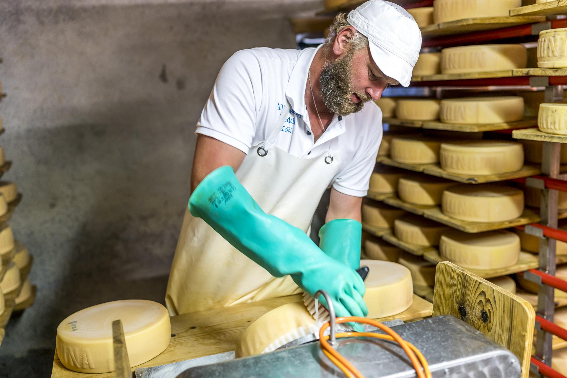 Tägliches Käse schmieren