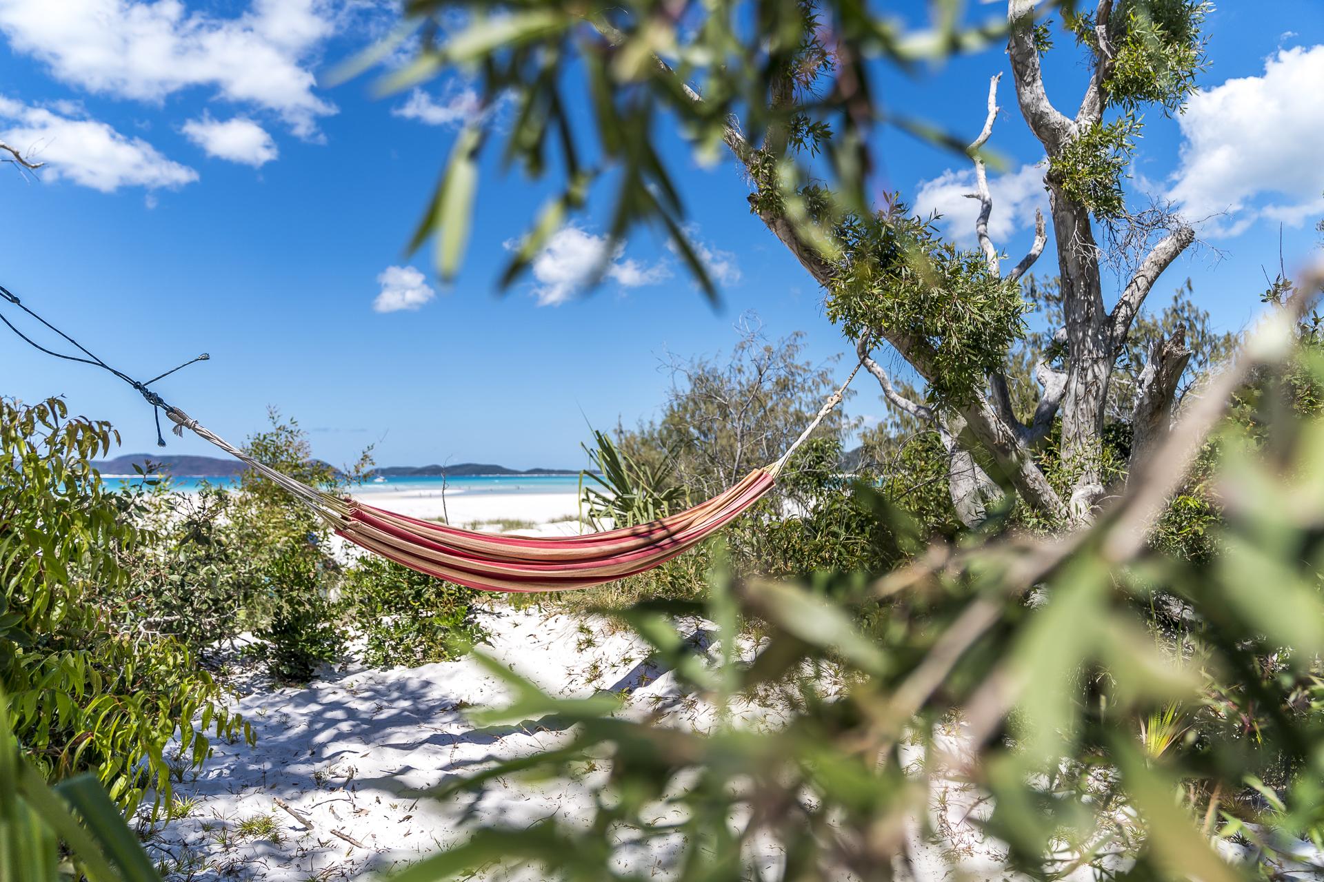 Chilling in Queensland Australia