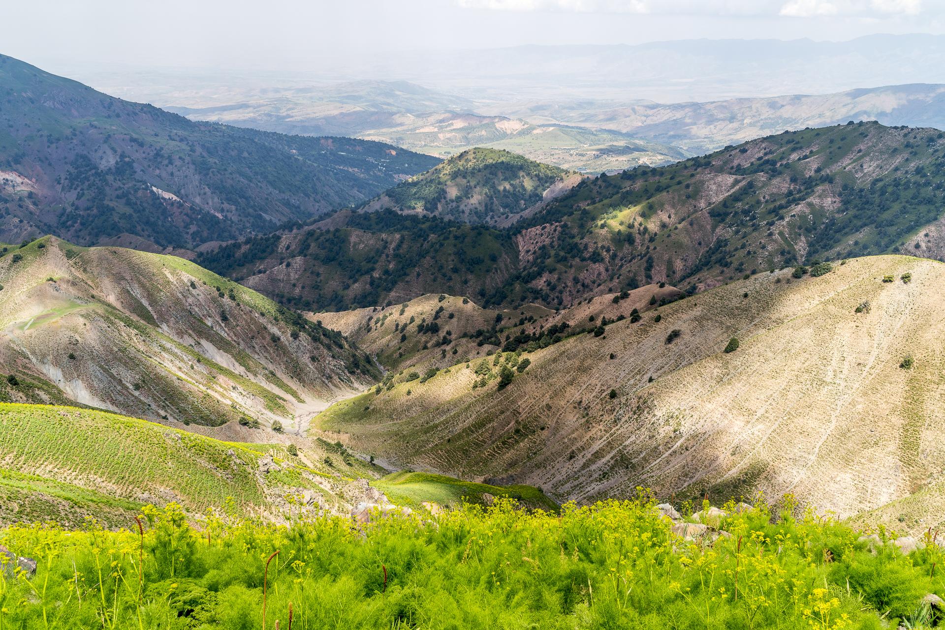 Chimgan Gebirge Usbekistan Landschaft