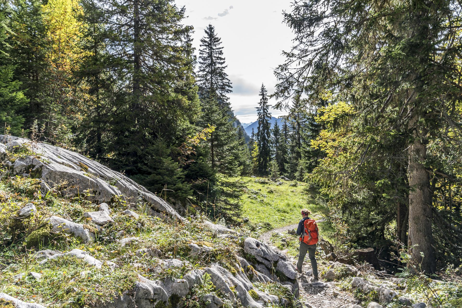 Erlebnispfad Lebensräume Stockhorn