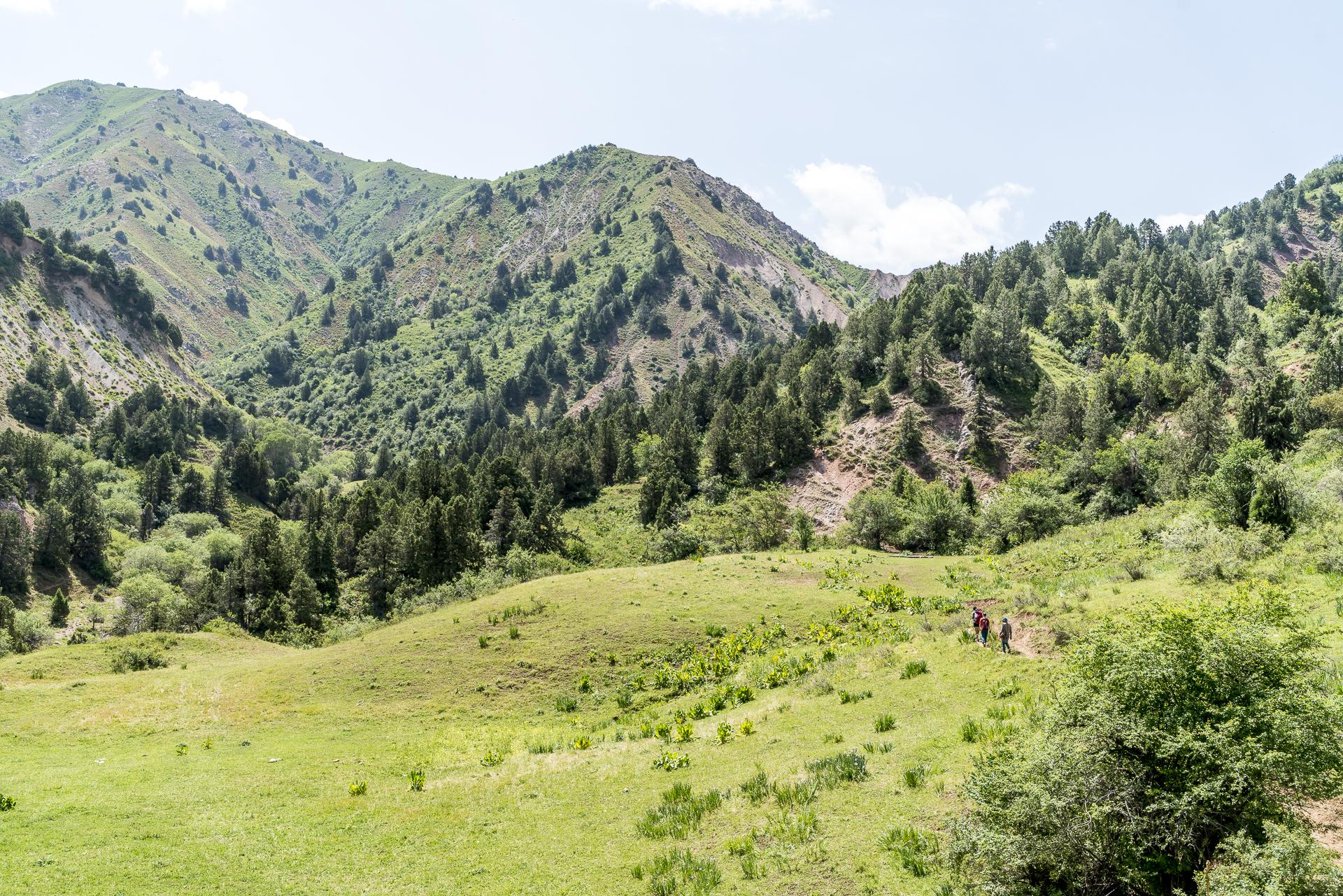Orta-Kumbel Pass Usbekistan