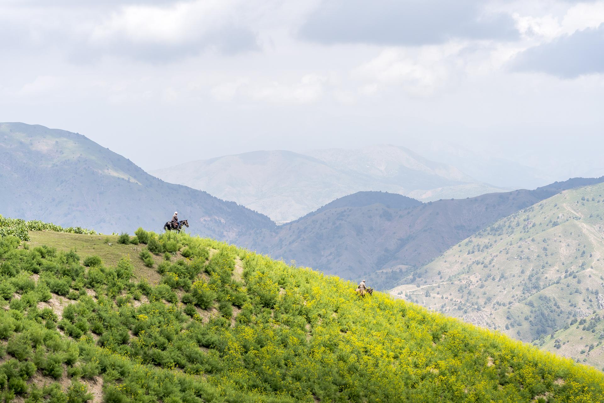 Reiter im Chimgan Gebirge