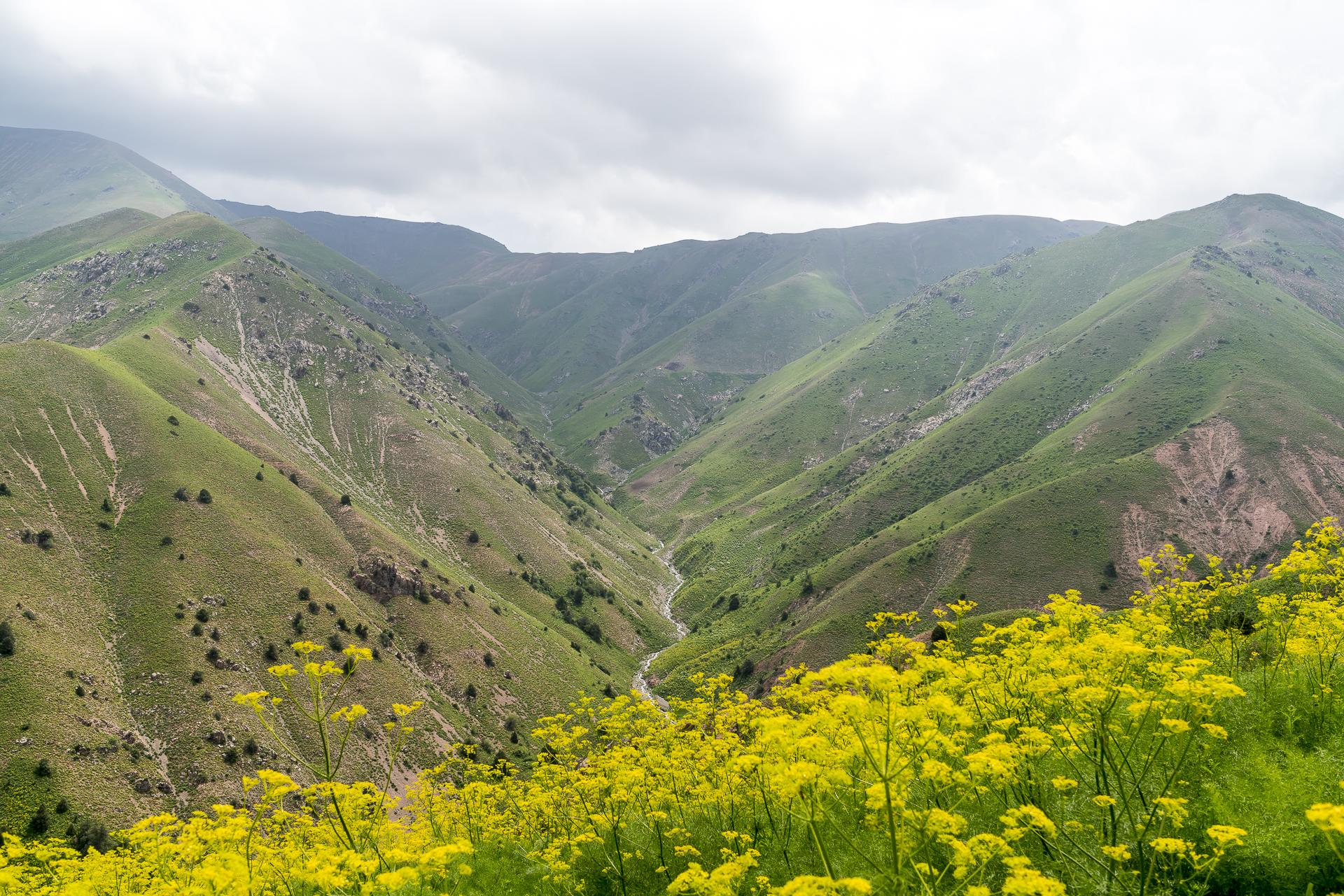 Usbekistan Chimgan Gebirge