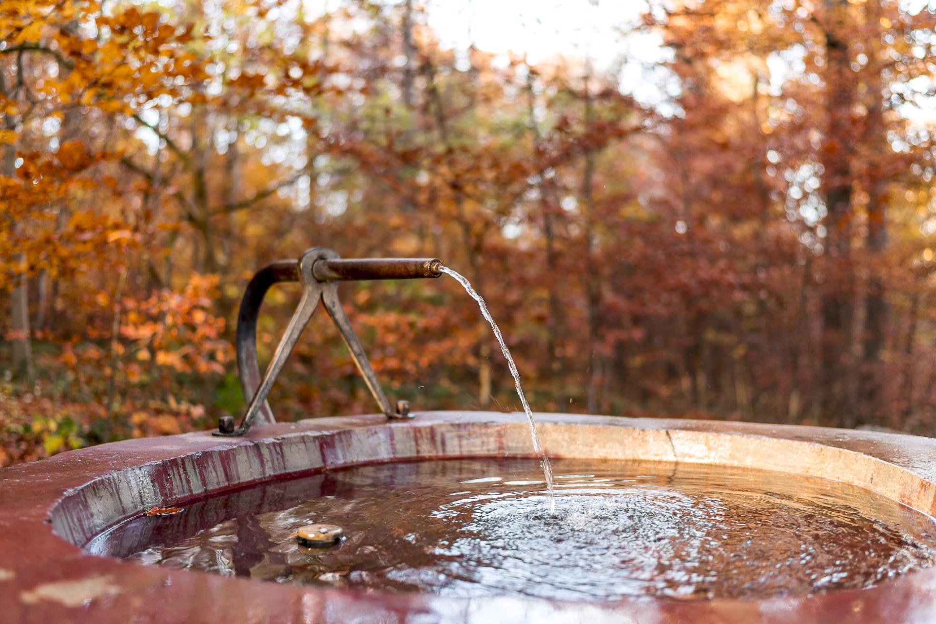 Lorenchopf Brunnen