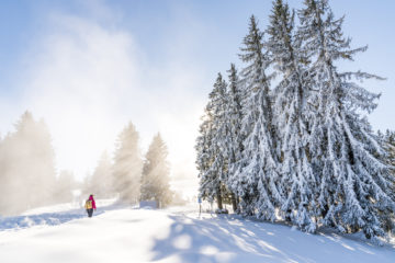 Entspannen im Allgäu: unsere Wohlfühl-Tage rund ums Hotel Oberstdorf