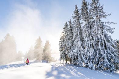 Allgäu Alpenwellness Auszeit