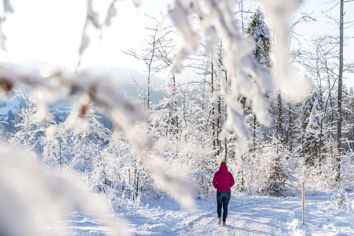 Winterwandern an der Breitach