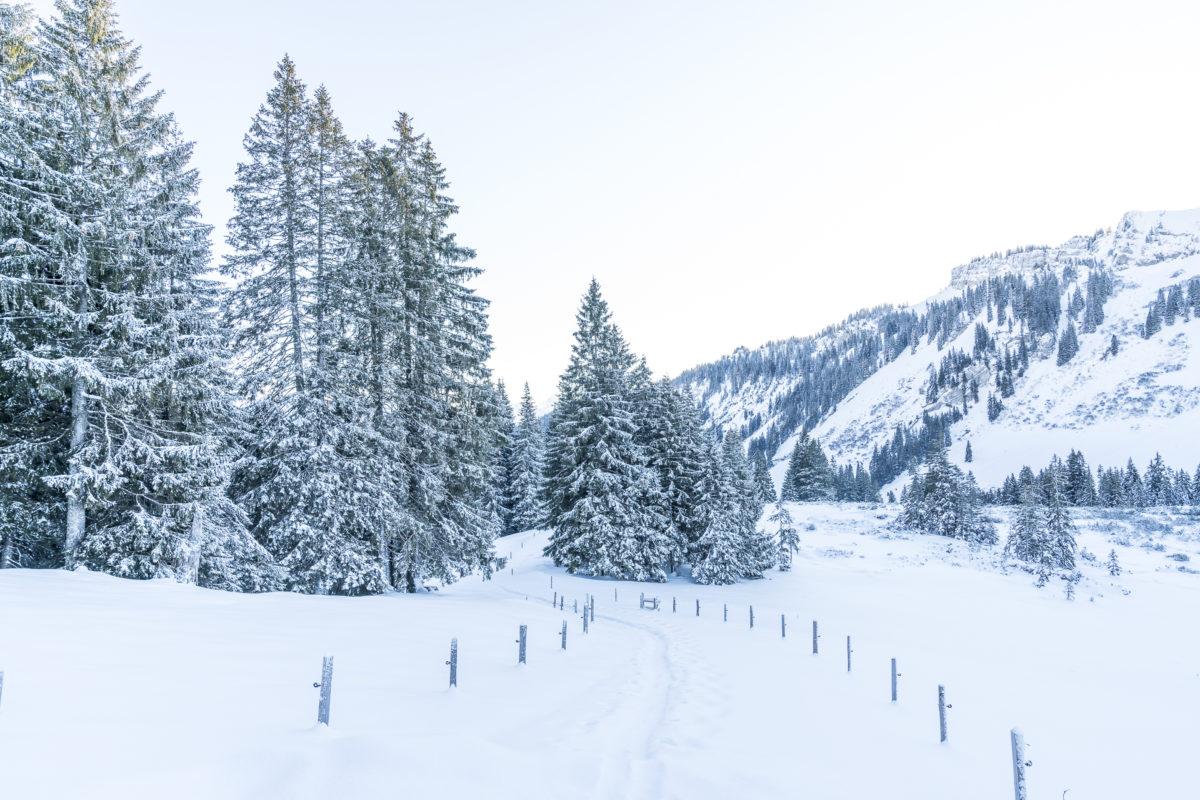 Balderschwang Naturpark Nagelfluhkette