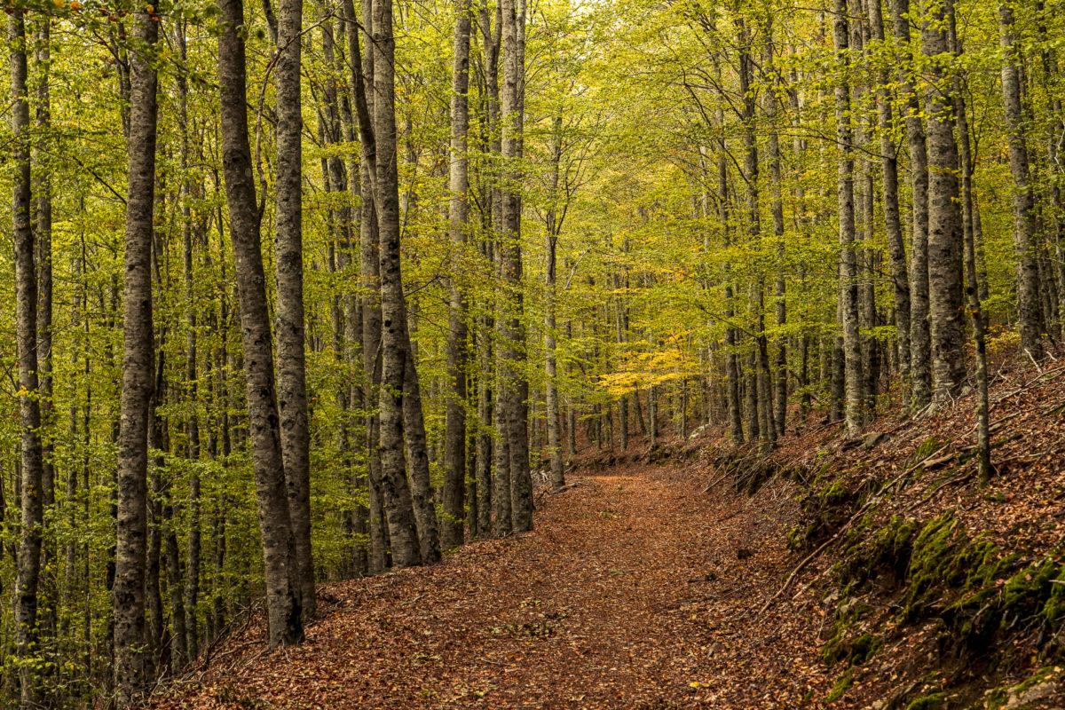 Serra da Estrela Naturpark
