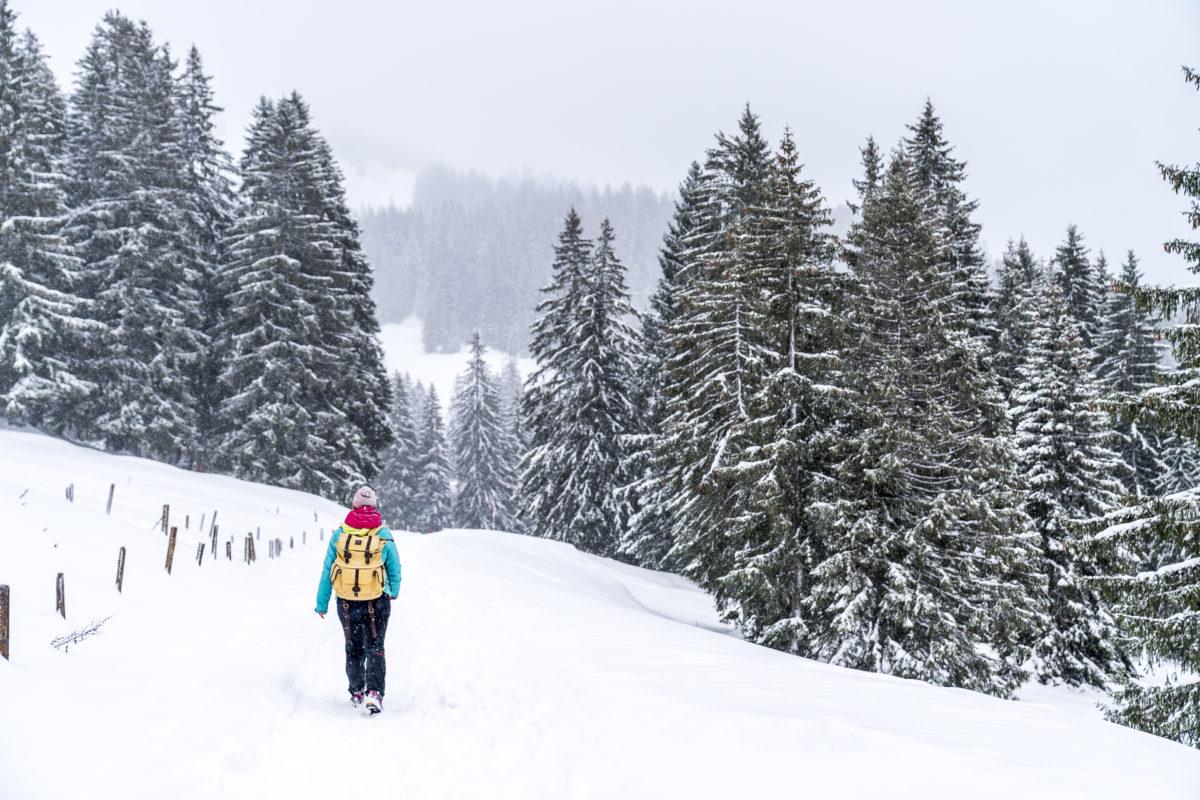 Winterwandern im Allgaeu