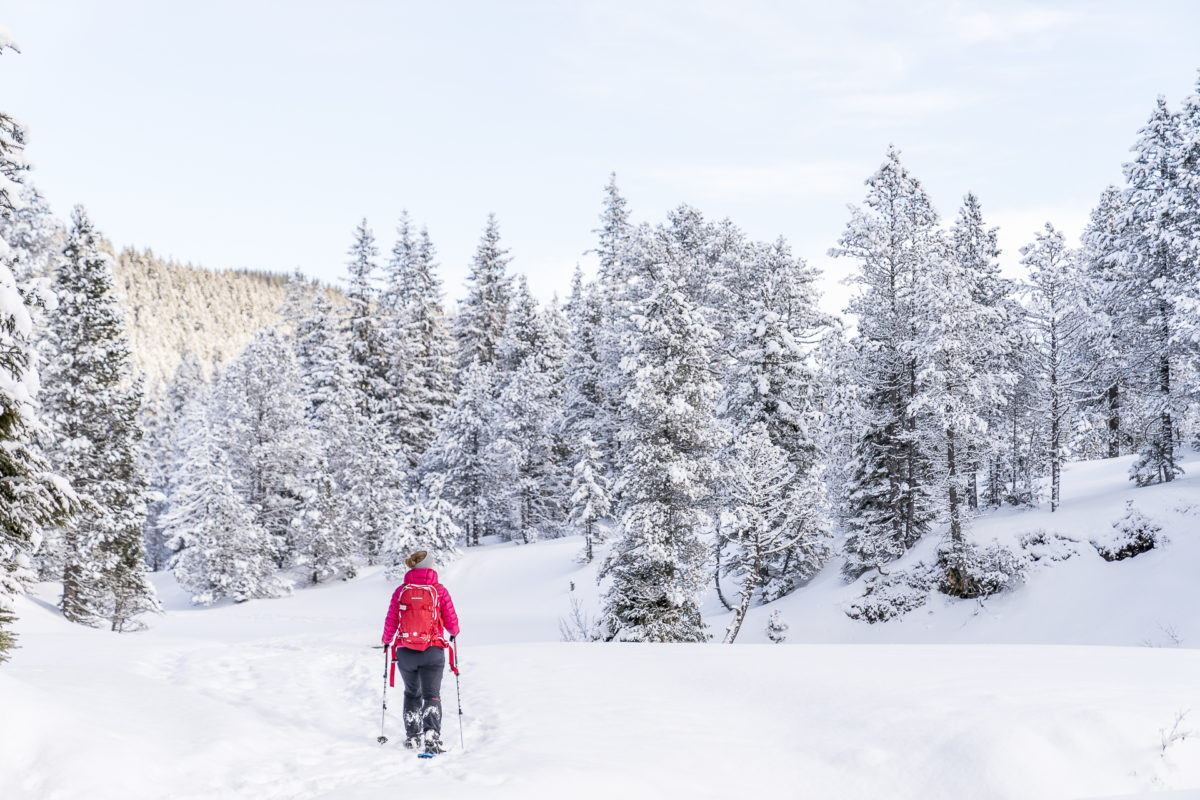 Jänzi Trail Glaubenberg